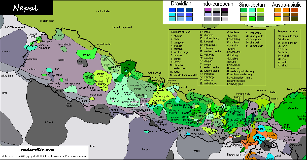 map of western asia with 12 on According To WHO Regions as well Global Reach together with Ilex aquifolium furthermore Index E also Continenti Descrizione.